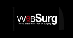 studio-creatif-logo-websurg-site-internet-webdesign-graphisme