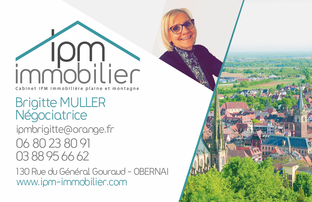 Creation Logo Agence Immobiliere IPM IMMOBILIER